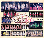 Hello! Project 20th Anniversary!! Hello! Project Hina Fes 2018 [Morning Musume '18 Premium] DVD Cover