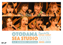 OTODAMA SEA STUDIO 2019 supported by POCARI SWEAT J=J Summer Special DVD Cover